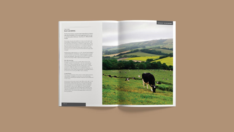 report design double page spread