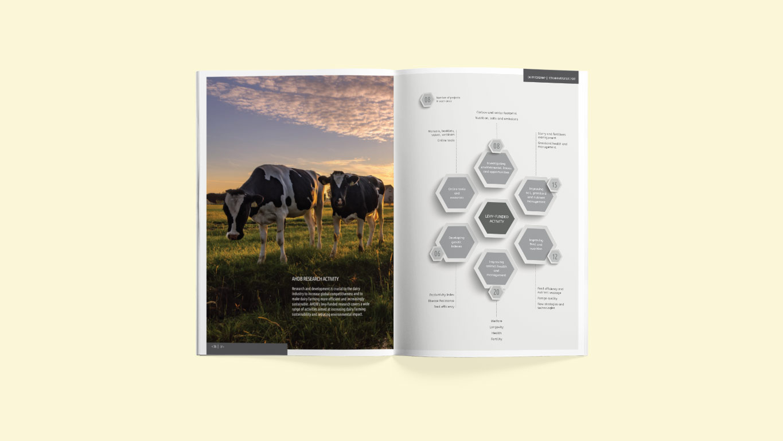 report design spread visual